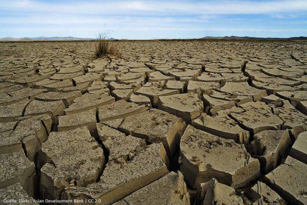 Bedrohung | Klimawandel – Klimaschutz