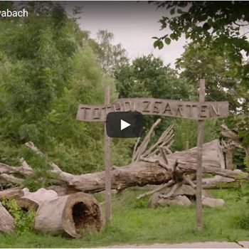 Totholzgarten der Gemeinde Schwabach