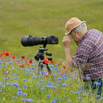 "Workshop ""Naturfotografie im Havelland"""