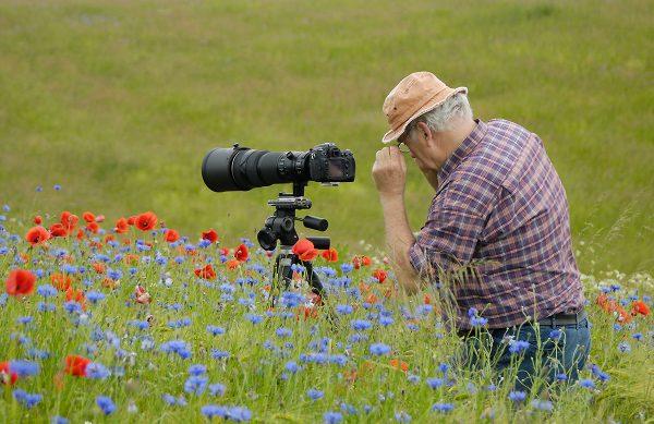 """Workshop """"Naturfotografie im Havelland"""""""